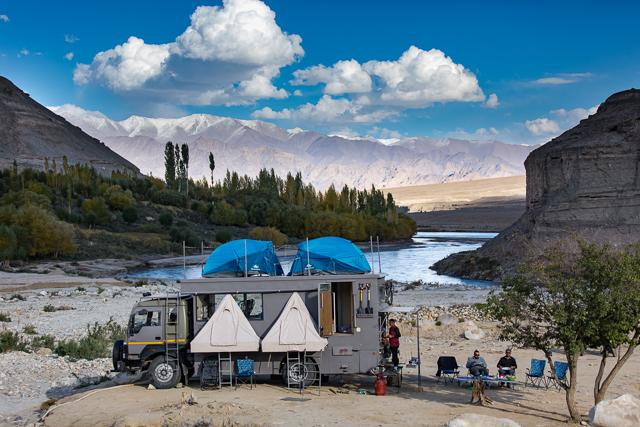 Taurus on the banks of River Indus, Ladakh.