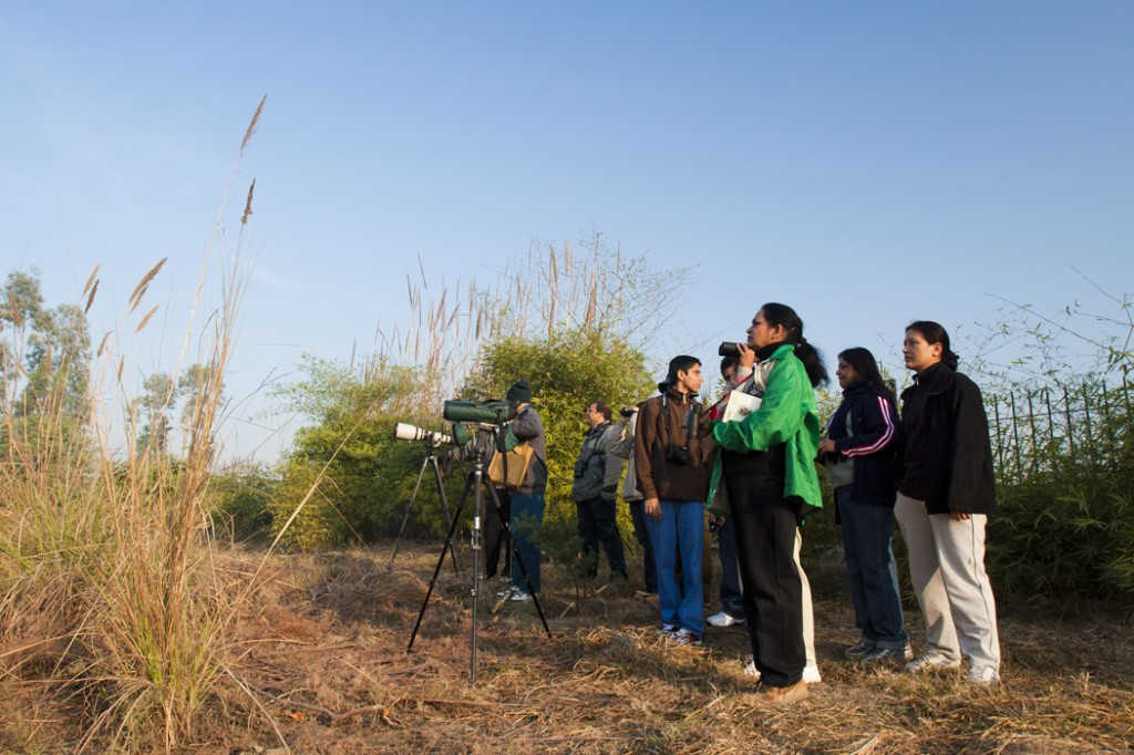 """<img src=""""birding with campervan caravan campingindia india.jpeg"""" alt=""""birding tours with caravan campervan overlanding organised with best motorhome for passionate birders and birding couples, photo tours, to relax, rejuvenate with nature, secluded camp locations with overland truck india"""">"""