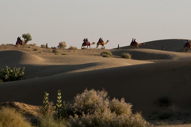 "<img src=""camel safari sand dunes.jpeg"" alt=""caravan campervan overlanding camp camping in rural setting surrounded by virgin sand dunes in a village near jaisalmer"">"