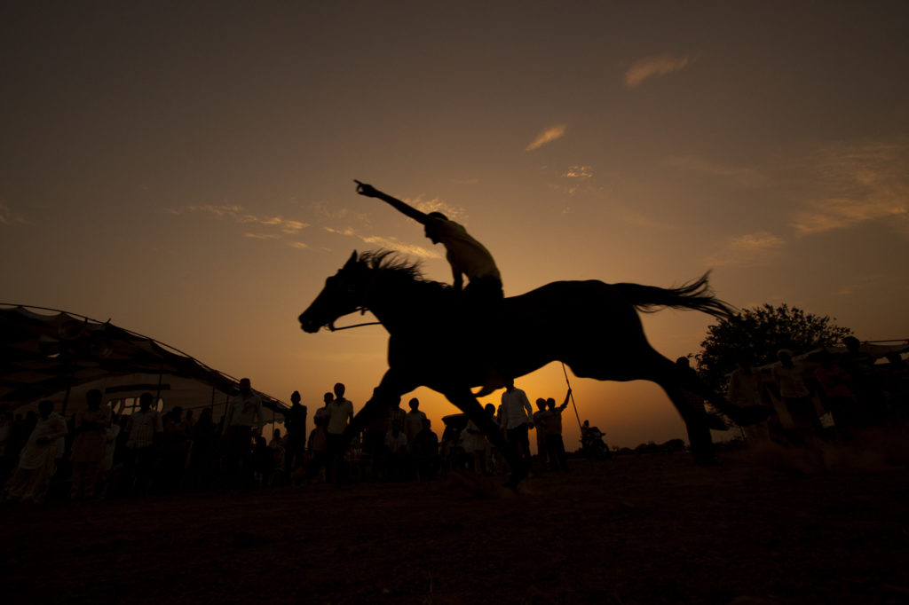 """<img src=""""horse rider at a village race event.jpeg"""" alt=""""best photo tour experience punjabi culture, festivals and folk art luxury nomadic unique experience of outdoor overlanding camp for best photography at rural games and events"""">"""