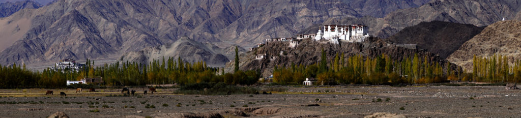 """<img src=""""Offbeat campervan caravan camping riverside.jpeg"""" alt=""""private sunset campervan overland truck nomadic caravan holiday for families couples romantic unique lifetime experience offbeat outdoor camp to relax unwind quiet place at secluded locations ladakh"""">"""