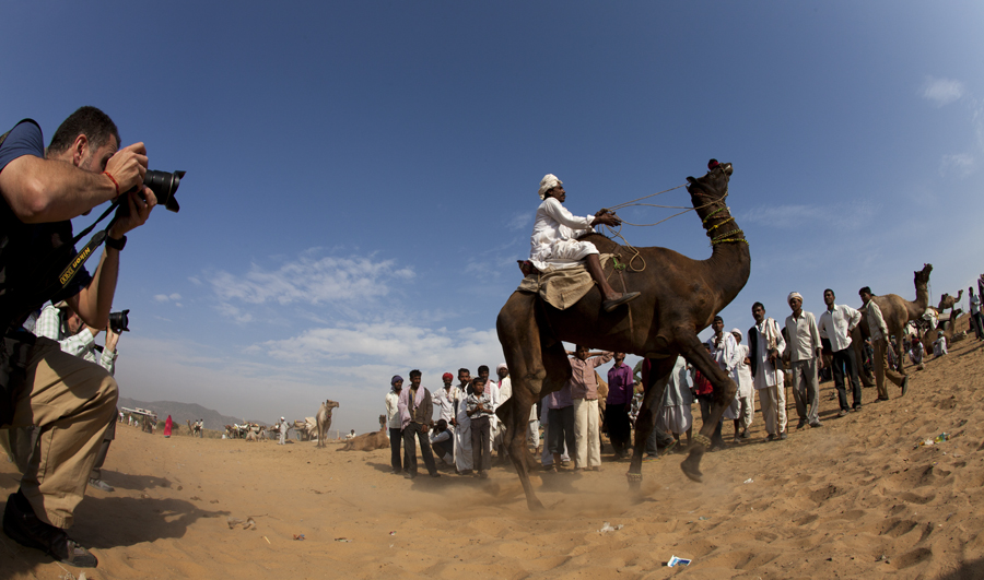 """<img src=""""best curated guided photo tour pushkar rajasthan.jpeg"""" alt=""""offbeat camp caravan campervan camping luxury nomadic unique experience of outdoor overlanding camp for best photography of camels at pushkar quiet secluded place next camel ground very intimate experience"""">"""