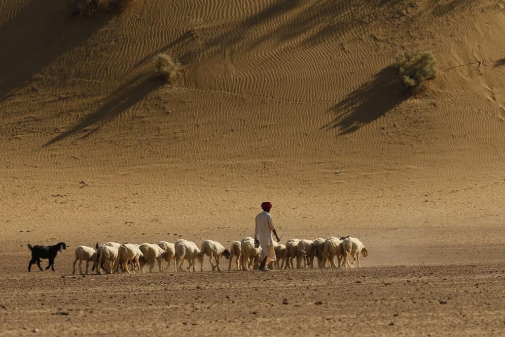 "<img src=""campervan caravan jaisalmer rural rajasthan.jpeg"" alt=""caravan campervan overlanding camp best motorhome to enjoy sand dunes of rural rajasthan secluded camp locations with overland truck in jaisalmer"">"